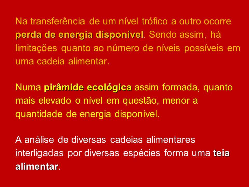 perda de energia disponível Na transferência de um nível trófico a outro ocorre perda de energia disponível. Sendo assim, há limitações quanto ao núme