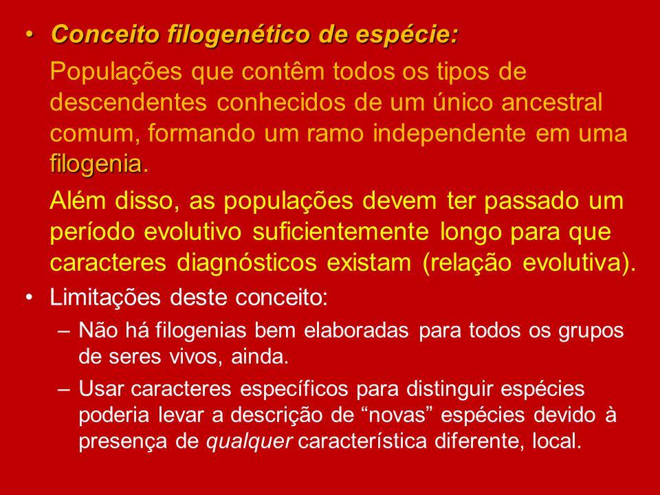 Conceito filogenético de espécie:Conceito filogenético de espécie: filogenia Populações que contêm todos os tipos de descendentes conhecidos de um úni