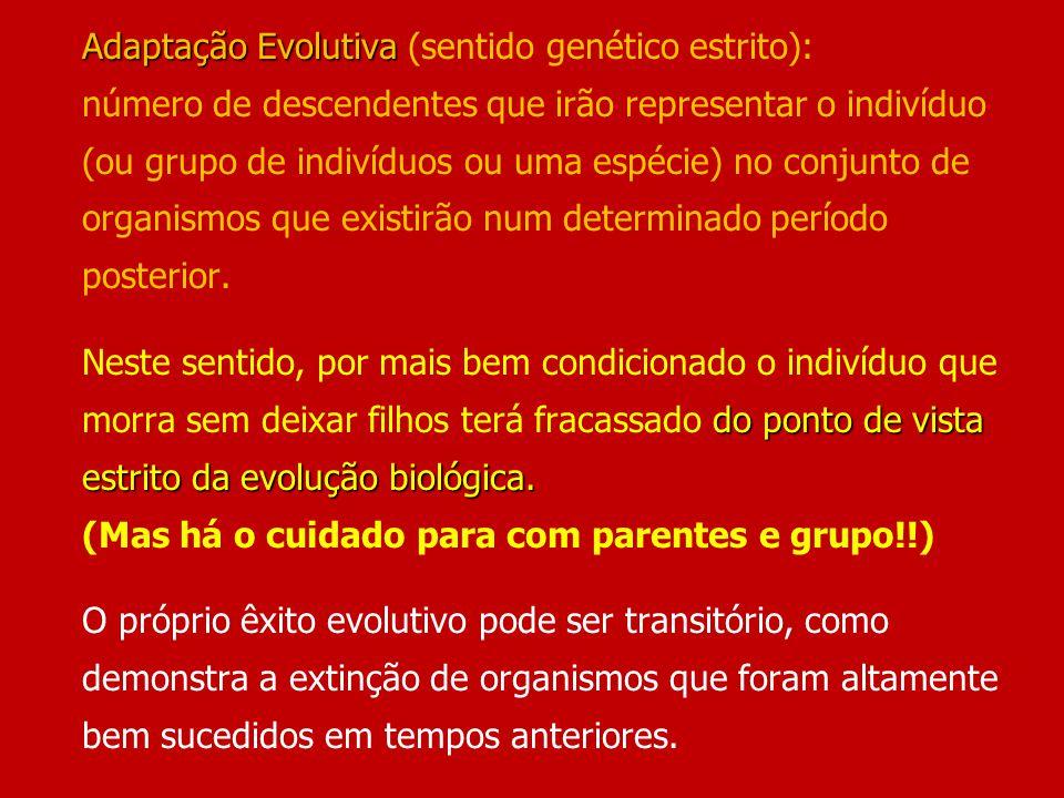 Adaptação Evolutiva do ponto de vista estrito da evolução biológica. Adaptação Evolutiva (sentido genético estrito): número de descendentes que irão r