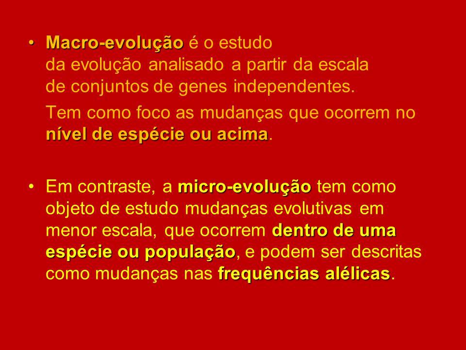 Macro-evoluçãoMacro-evolução é o estudo da evolução analisado a partir da escala de conjuntos de genes independentes. nível de espécie ou acima Tem co