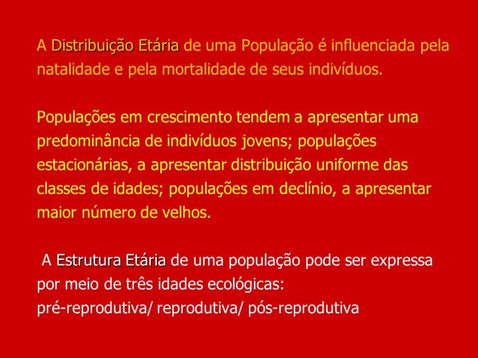 Distribuição Etária Estrutura Etária A Distribuição Etária de uma População é influenciada pela natalidade e pela mortalidade de seus indivíduos. Popu