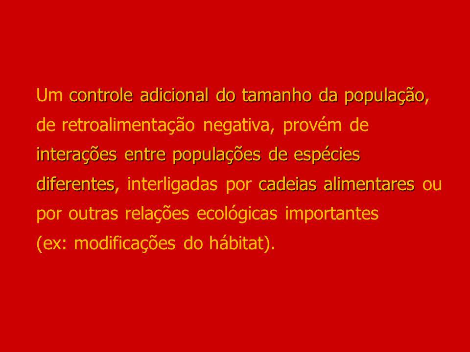 controle adicional do tamanho da população interações entre populações de espécies diferentescadeias alimentares Um controle adicional do tamanho da p
