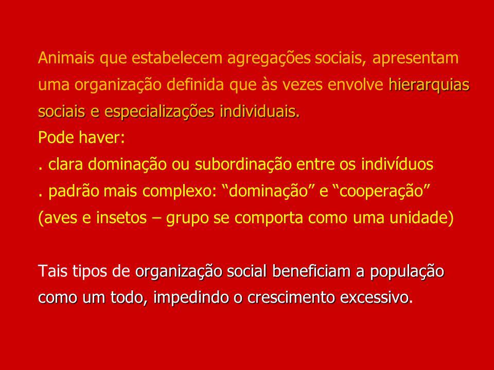 hierarquias sociais e especializações individuais. organização social beneficiam a população como um todo, impedindo o crescimento excessivo Animais q