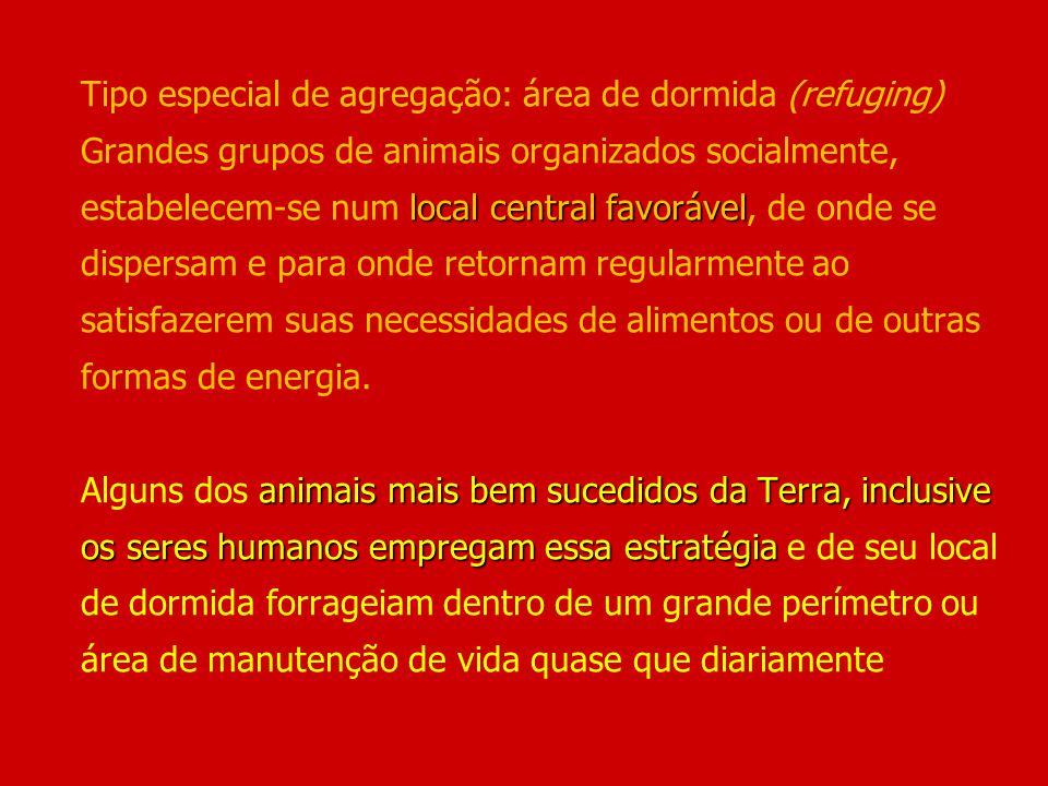 local central favorável animais mais bem sucedidos da Terra, inclusive os seres humanos empregam essa estratégia Tipo especial de agregação: área de d