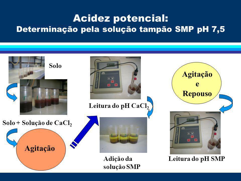 Curva de calibração: valores do pH SMP e H+Al determinados pelo método do CaOAc 0,5 mol L -1 a pH 7,0 H+Al = 23,504e -1,0537pH SMP r 2 = 0,999 Acidez potencial: Determinação pela solução tampão SMP pH 7,5