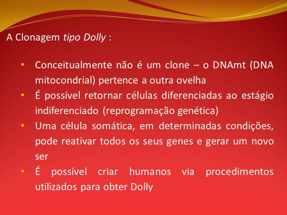 A Clonagem tipo Dolly : Conceitualmente não é um clone – o DNAmt (DNA mitocondrial) pertence a outra ovelha É possível retornar células diferenciadas