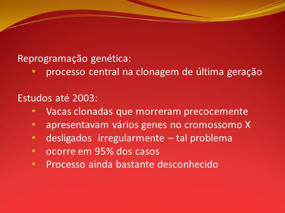 Reprogramação genética: processo central na clonagem de última geração Estudos até 2003: Vacas clonadas que morreram precocemente apresentavam vários