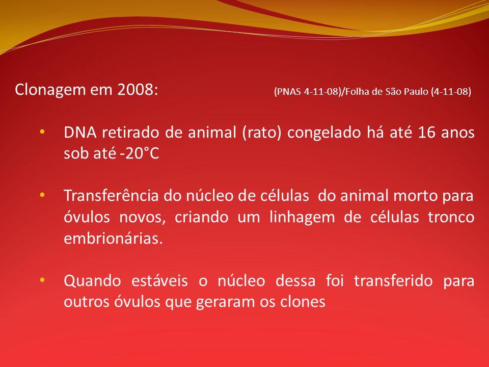 Clonagem em 2008: (PNAS 4-11-08)/Folha de São Paulo (4-11-08) DNA retirado de animal (rato) congelado há até 16 anos sob até -20°C Transferência do nú
