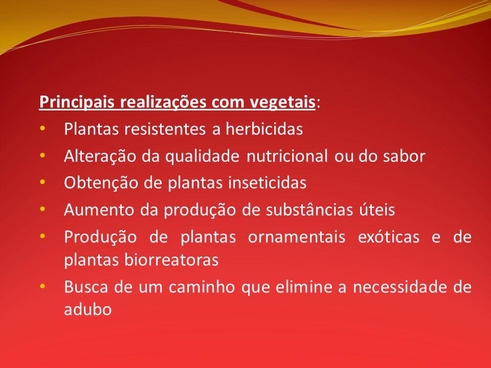 Principais realizações com vegetais: Plantas resistentes a herbicidas Alteração da qualidade nutricional ou do sabor Obtenção de plantas inseticidas A