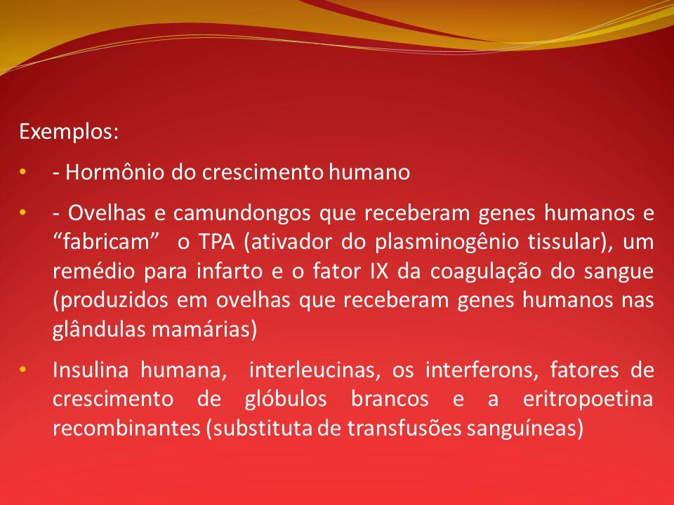 Exemplos: - Hormônio do crescimento humano - Ovelhas e camundongos que receberam genes humanos e fabricam o TPA (ativador do plasminogênio tissular),