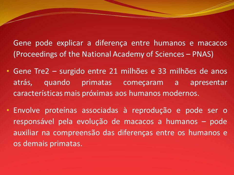 Gene pode explicar a diferença entre humanos e macacos (Proceedings of the National Academy of Sciences – PNAS) Gene Tre2 – surgido entre 21 milhões e