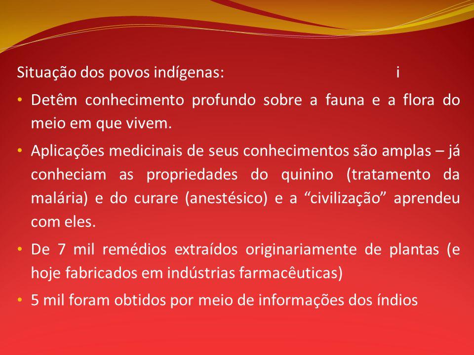 Situação dos povos indígenas:i Detêm conhecimento profundo sobre a fauna e a flora do meio em que vivem. Aplicações medicinais de seus conhecimentos s