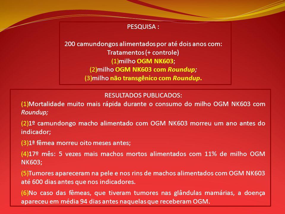 PESQUISA : 200 camundongos alimentados por até dois anos com: Tratamentos (+ controle) (1) milho OGM NK603; (2) milho OGM NK603 com Roundup; (3) milho