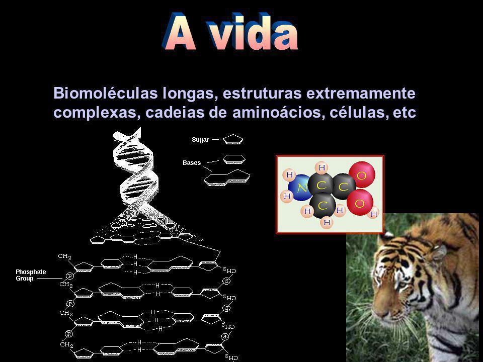 Biomoléculas longas, estruturas extremamente complexas, cadeias de aminoácios, células, etc