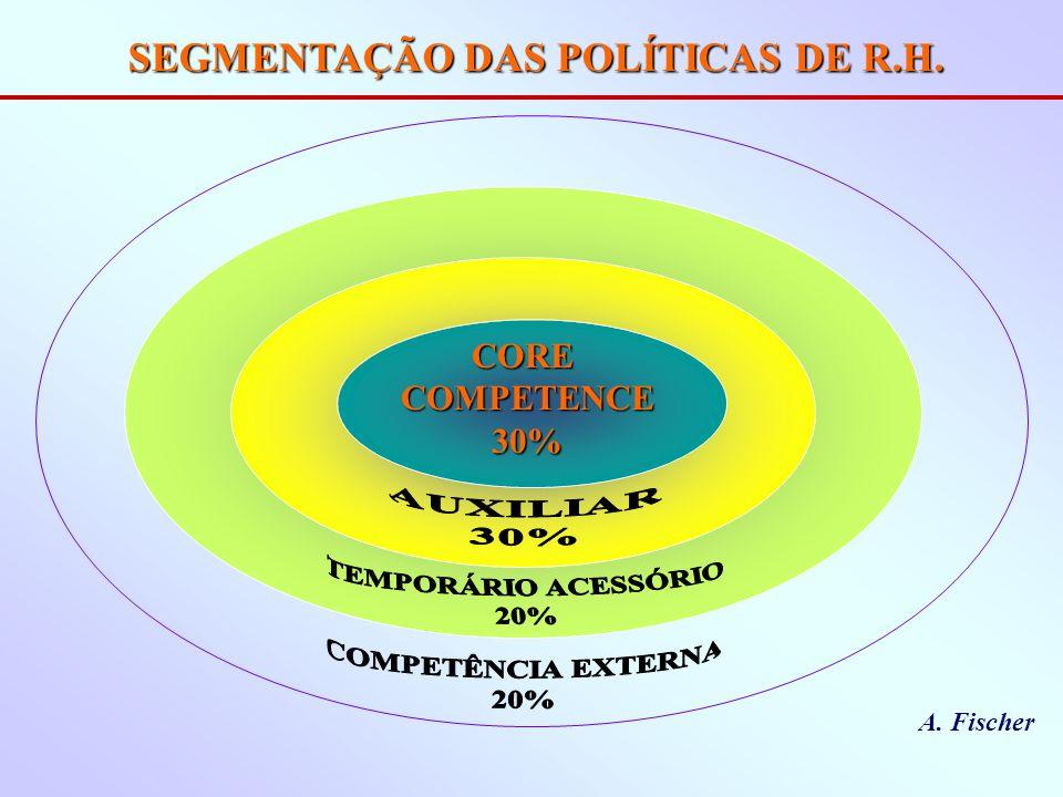SEGMENTAÇÃO DAS POLÍTICAS DE R.H. CORECOMPETENCE30% A. Fischer