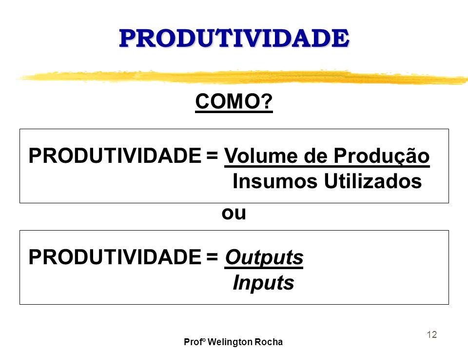 12 PRODUTIVIDADE PRODUTIVIDADE = Volume de Produção Insumos Utilizados COMO? PRODUTIVIDADE = Outputs Inputs ou Profº Welington Rocha