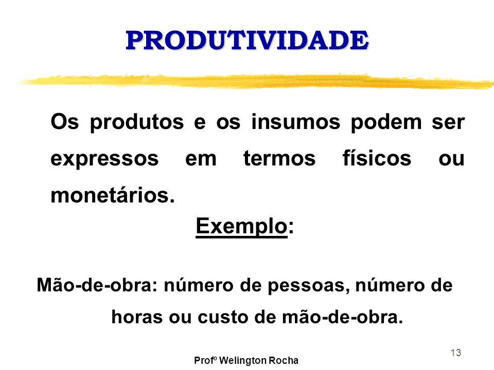 13 PRODUTIVIDADE Os produtos e os insumos podem ser expressos em termos físicos ou monetários. Exemplo: Mão-de-obra: número de pessoas, número de hora