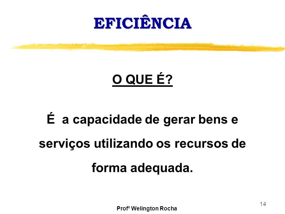 14 EFICIÊNCIA O QUE É? É a capacidade de gerar bens e serviços utilizando os recursos de forma adequada. Profº Welington Rocha