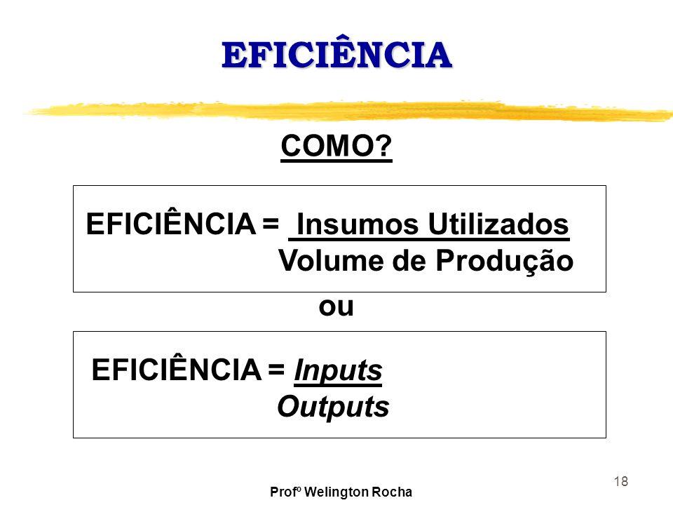 18 EFICIÊNCIA EFICIÊNCIA = Insumos Utilizados Volume de Produção COMO? EFICIÊNCIA = Inputs Outputs ou Profº Welington Rocha