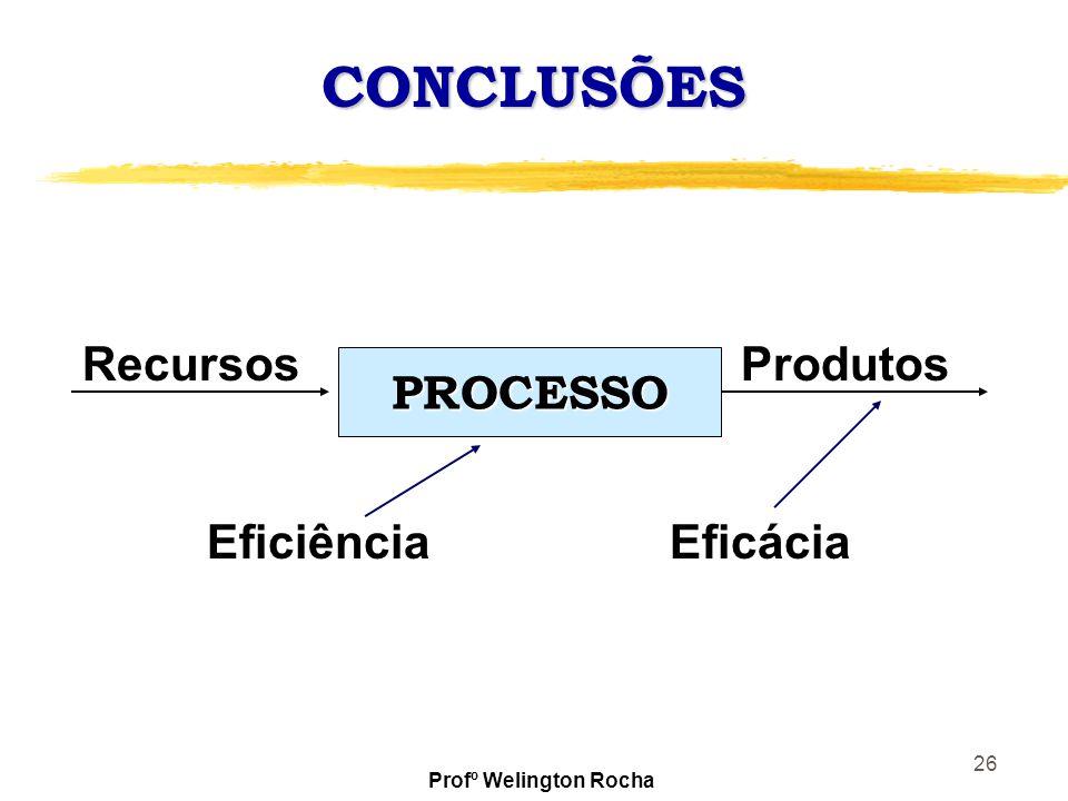 26 CONCLUSÕES PROCESSO RecursosProdutos EficiênciaEficácia Profº Welington Rocha