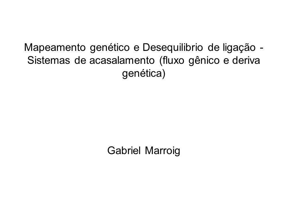 Mapeamento genético e Desequilibrio de ligação - Sistemas de acasalamento (fluxo gênico e deriva genética) Gabriel Marroig