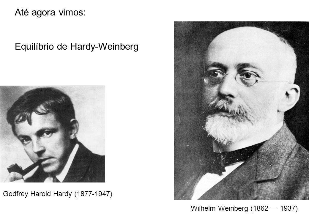 Godfrey Harold Hardy (1877-1947) Wilhelm Weinberg (1862 1937) Até agora vimos: Equilíbrio de Hardy-Weinberg
