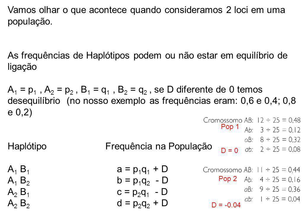 Vamos olhar o que acontece quando consideramos 2 loci em uma população. As frequências de Haplótipos podem ou não estar em equilíbrio de ligação A 1 =