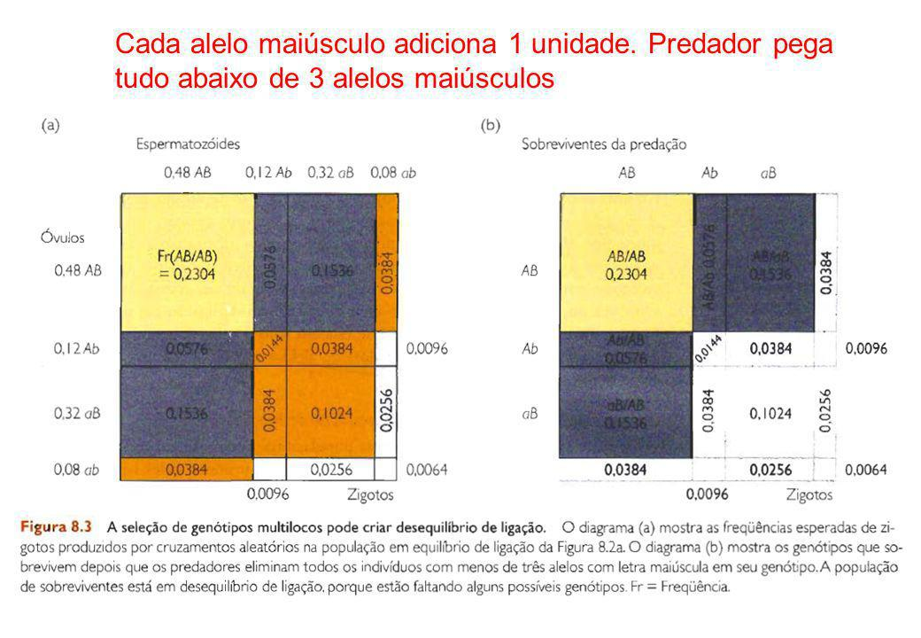 Cada alelo maiúsculo adiciona 1 unidade. Predador pega tudo abaixo de 3 alelos maiúsculos