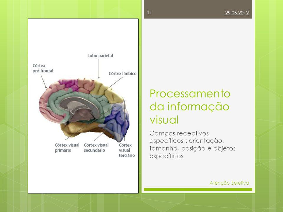 29.06.2012 11 Atenção Seletiva Processamento da informação visual Campos receptivos específicos : orientação, tamanho, posição e objetos específicos