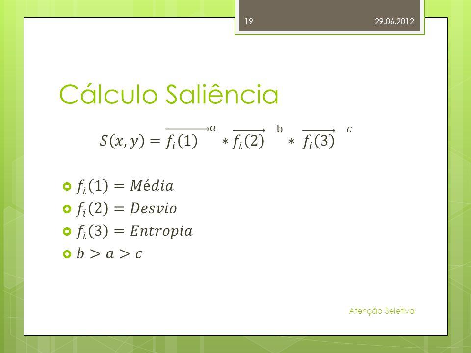 Cálculo Saliência 29.06.2012 Atenção Seletiva 19