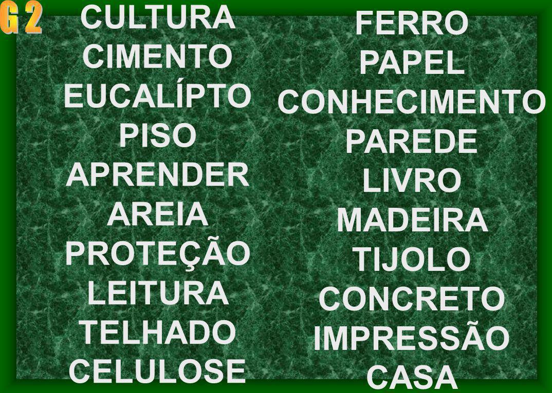 CIMENTO EUCALÍPTO PISO APRENDER AREIA PROTEÇÃO LEITURA TELHADO CELULOSE FERRO PAPEL CONHECIMENTO PAREDE LIVRO MADEIRA TIJOLO CONCRETO IMPRESSÃO CASA
