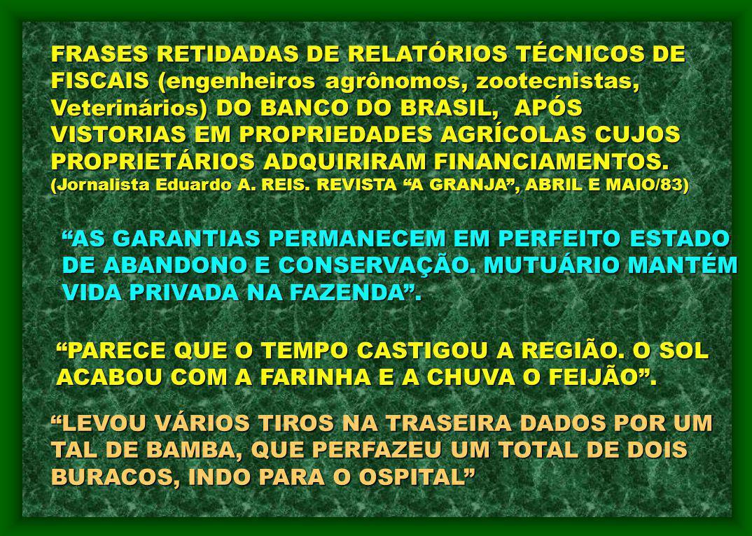 FRASES RETIDADAS DE RELATÓRIOS TÉCNICOS DE FISCAIS (engenheiros agrônomos, zootecnistas, Veterinários) DO BANCO DO BRASIL, APÓS VISTORIAS EM PROPRIEDA