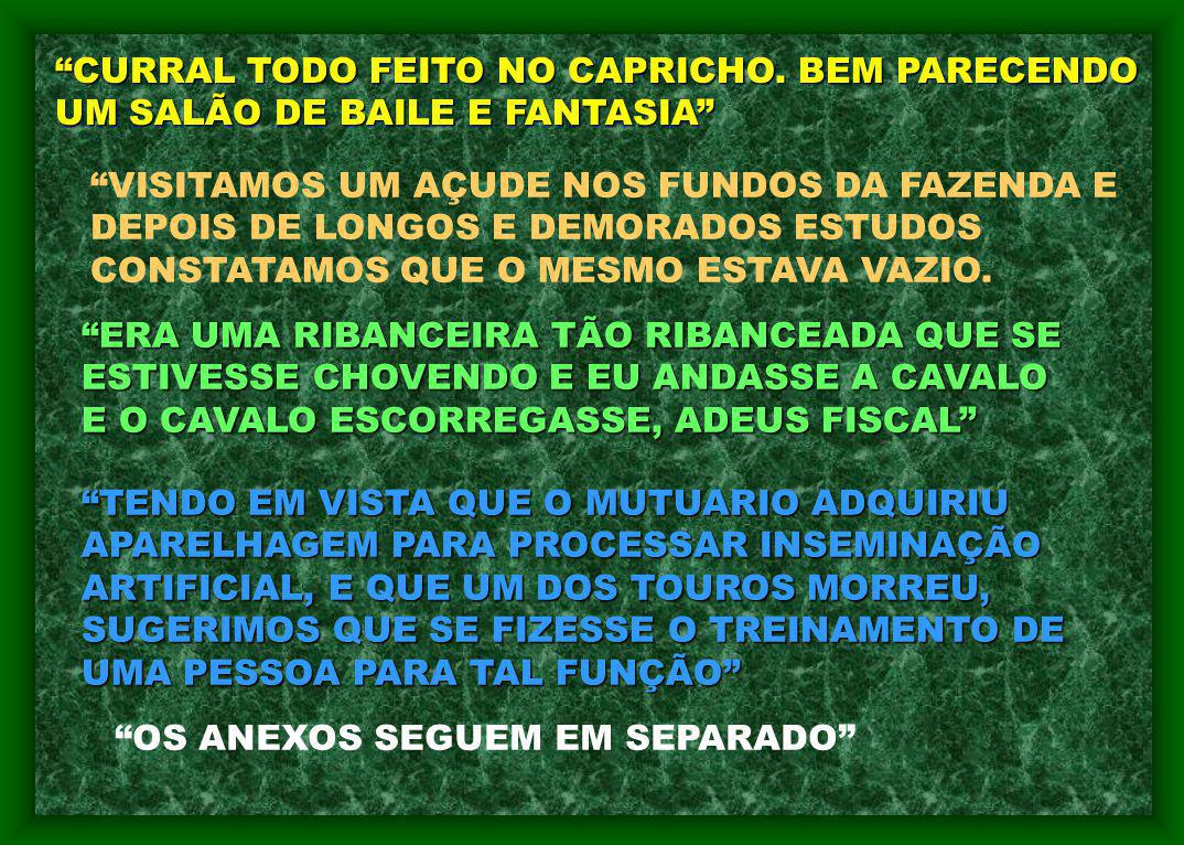 CURRAL TODO FEITO NO CAPRICHO.