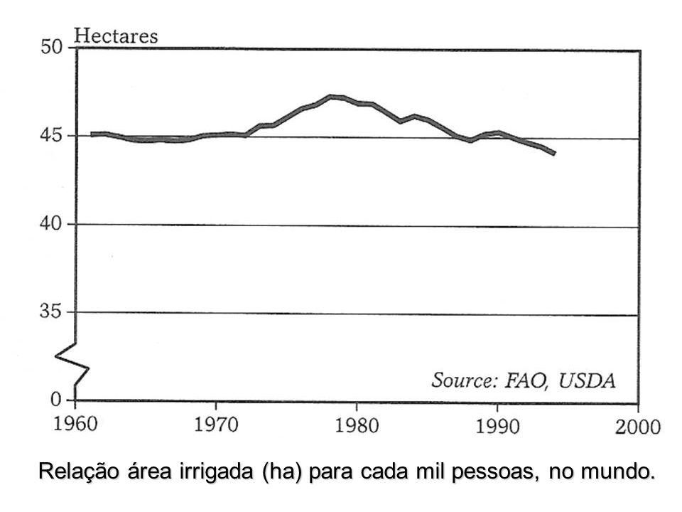 Relação área irrigada (ha) para cada mil pessoas, no mundo.