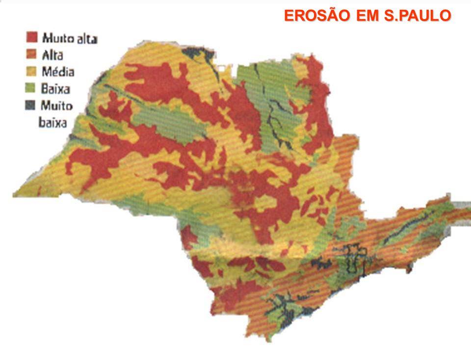 EROSÃO EM S.PAULO