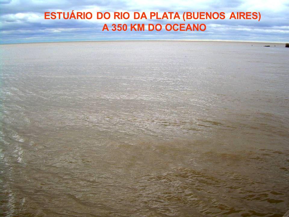 ESTUÁRIO DO RIO DA PLATA (BUENOS AIRES) A 350 KM DO OCEANO