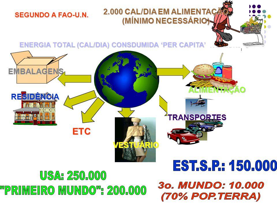 ETC ENERGIA TOTAL (CAL/DIA) CONSDUMIDA PER CAPITA NO MUNDO EMBALAGENS ALIMENTAÇÃO RESIDÊNCIA VESTUÁRIO TRANSPORTES SEGUNDO A FAO-U.N.