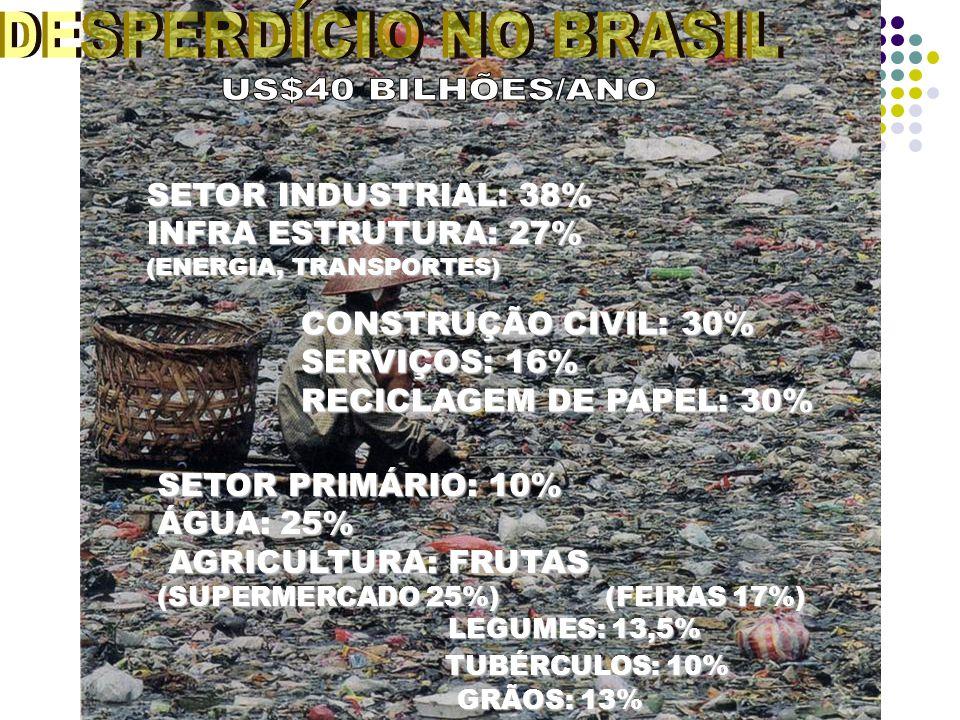 SETOR INDUSTRIAL: 38% INFRA ESTRUTURA: 27% (ENERGIA, TRANSPORTES) CONSTRUÇÃO CIVIL: 30% SERVIÇOS: 16% RECICLAGEM DE PAPEL: 30% SETOR PRIMÁRIO: 10% ÁGUA: 25% AGRICULTURA: FRUTAS AGRICULTURA: FRUTAS (SUPERMERCADO 25%) (FEIRAS 17%) LEGUMES: 13,5% LEGUMES: 13,5% TUBÉRCULOS: 10% TUBÉRCULOS: 10% GRÃOS: 13% GRÃOS: 13%