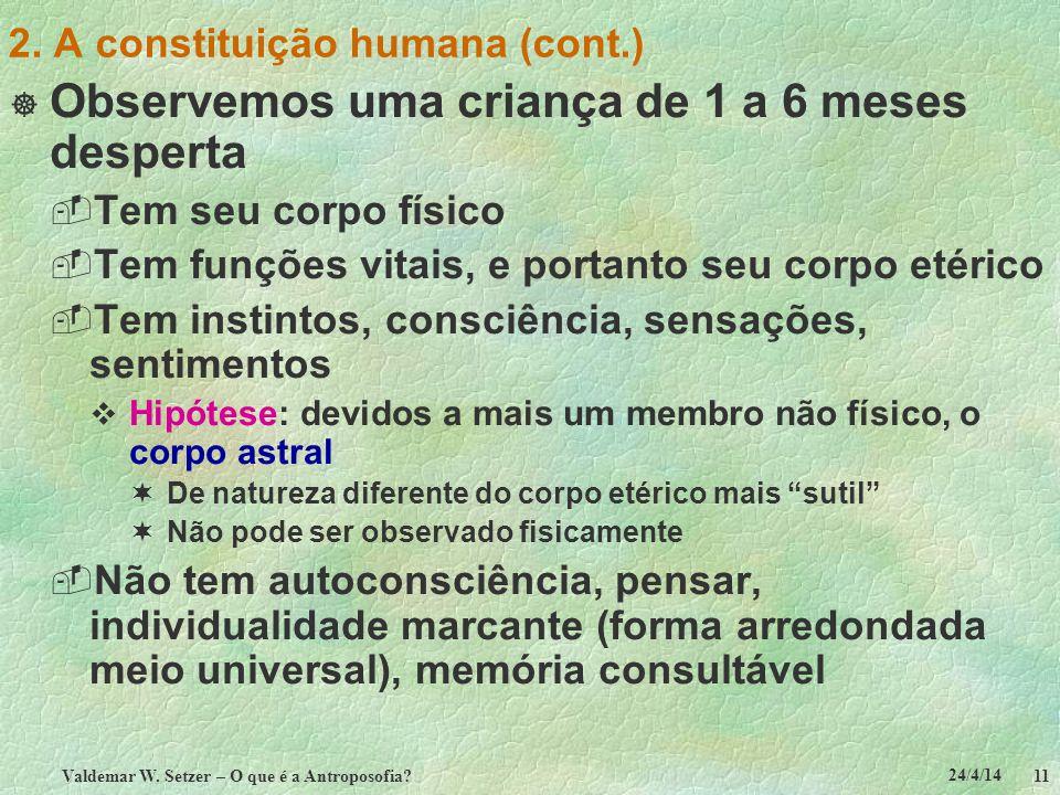 24/4/14 Valdemar W. Setzer – O que é a Antroposofia? 11 2. A constituição humana (cont.) Observemos uma criança de 1 a 6 meses desperta Tem seu corpo