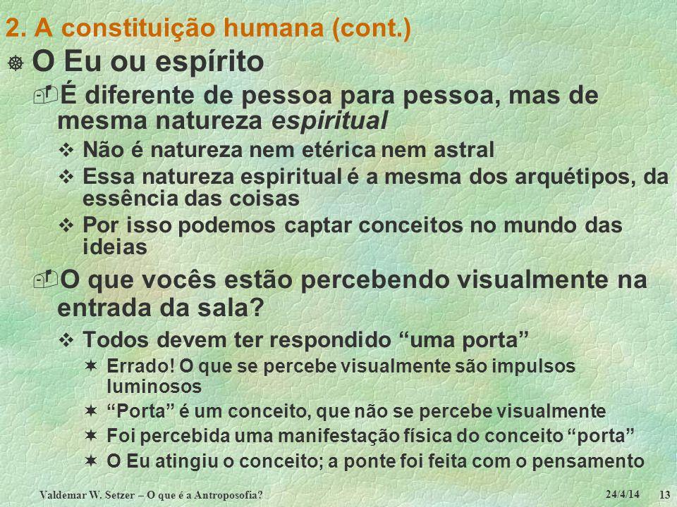 24/4/14 Valdemar W. Setzer – O que é a Antroposofia? 13 2. A constituição humana (cont.) O Eu ou espírito É diferente de pessoa para pessoa, mas de me