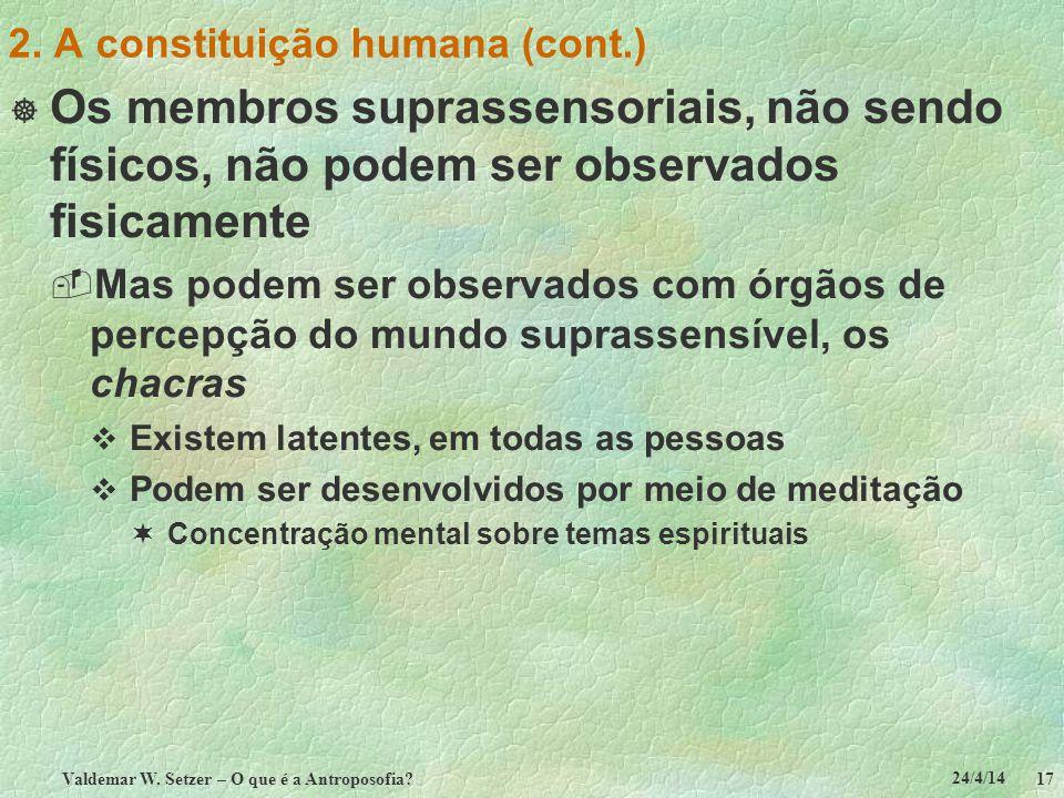 24/4/14 Valdemar W. Setzer – O que é a Antroposofia? 17 2. A constituição humana (cont.) Os membros suprassensoriais, não sendo físicos, não podem ser