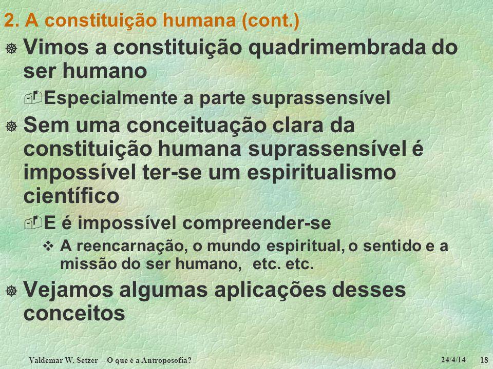24/4/14 Valdemar W. Setzer – O que é a Antroposofia? 18 2. A constituição humana (cont.) Vimos a constituição quadrimembrada do ser humano Especialmen