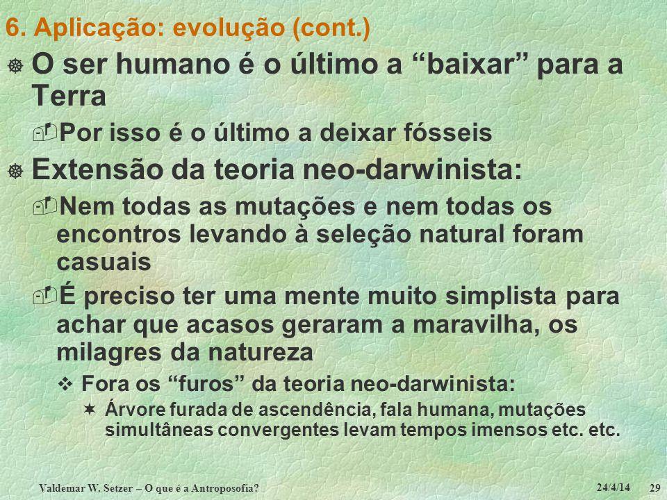 24/4/14 Valdemar W. Setzer – O que é a Antroposofia? 29 6. Aplicação: evolução (cont.) O ser humano é o último a baixar para a Terra Por isso é o últi