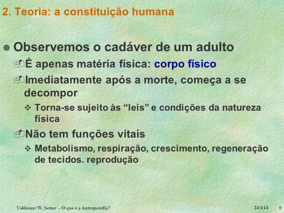 24/4/14 Valdemar W. Setzer – O que é a Antroposofia? 9 2. Teoria: a constituição humana Observemos o cadáver de um adulto É apenas matéria física: cor