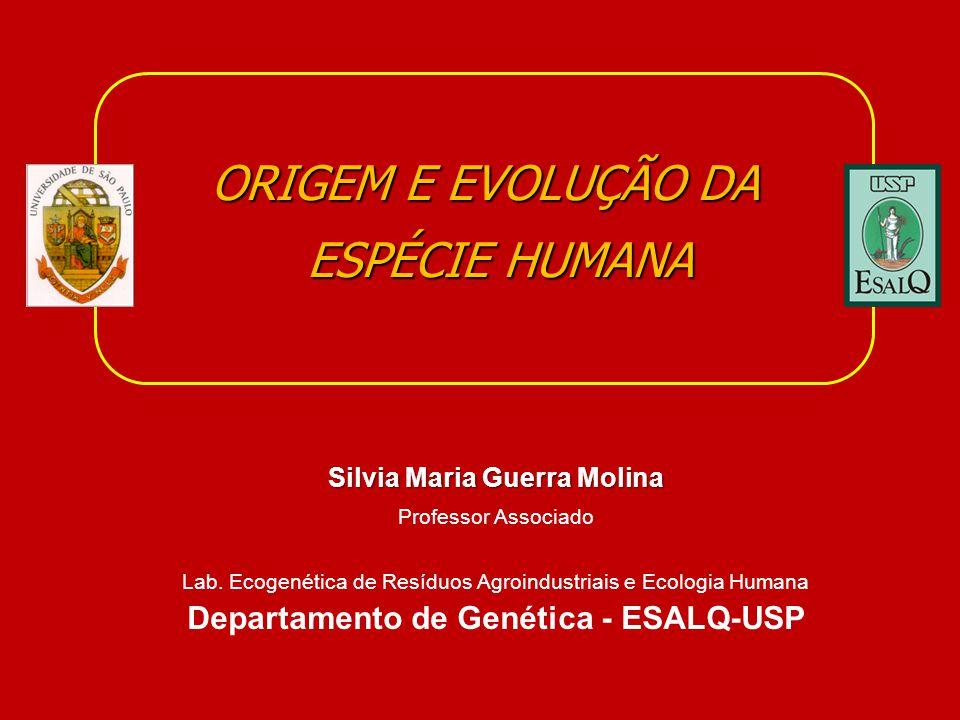 ORIGEM E EVOLUÇÃO DA ESPÉCIE HUMANA Silvia Maria Guerra Molina Professor Associado Lab. Ecogenética de Resíduos Agroindustriais e Ecologia Humana Depa