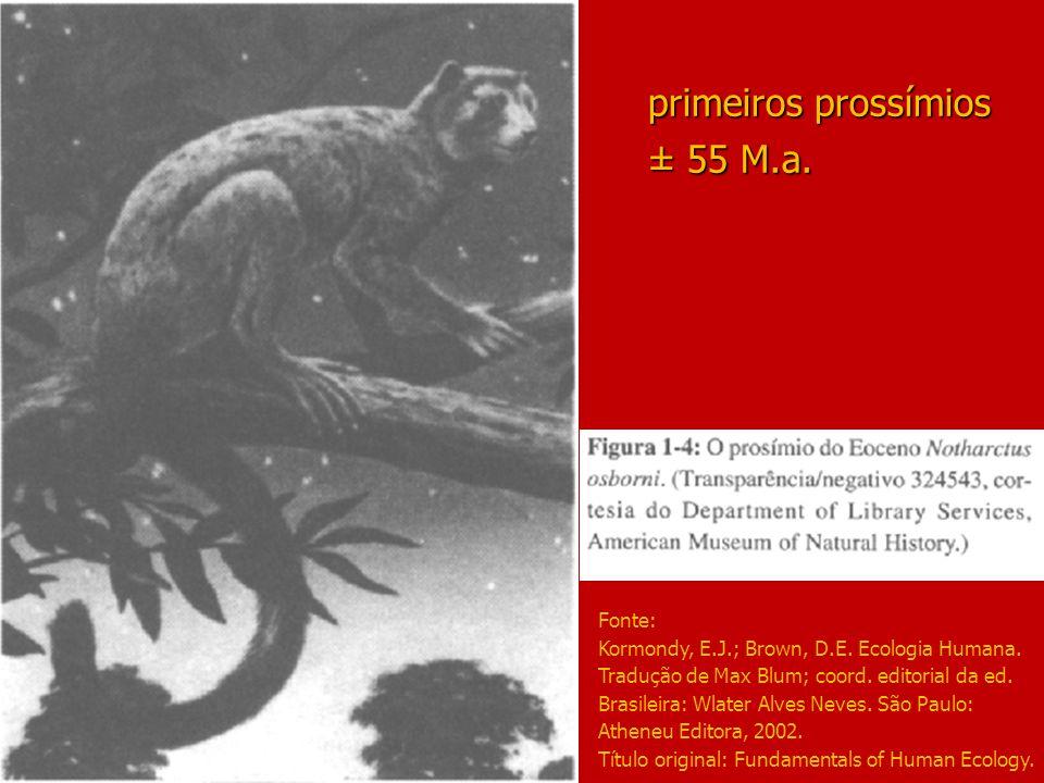 primeiros prossímios ± 55 M.a. Fonte: Kormondy, E.J.; Brown, D.E. Ecologia Humana. Tradução de Max Blum; coord. editorial da ed. Brasileira: Wlater Al