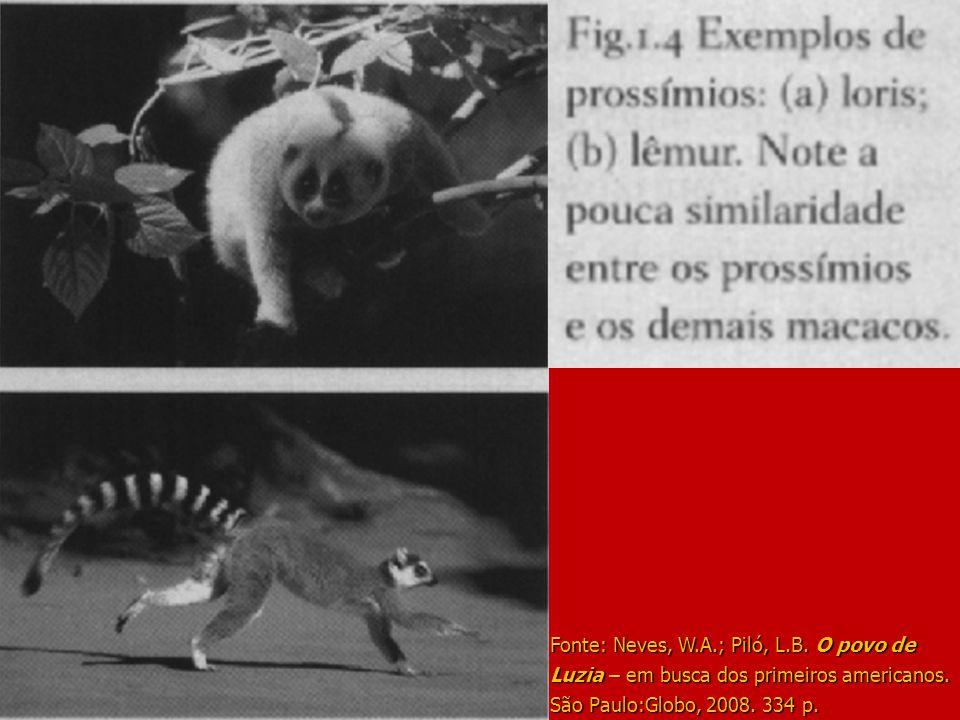 Fonte: Neves, W.A.; Piló, L.B. O povo de Luzia – em busca dos primeiros americanos. São Paulo:Globo, 2008. 334 p.