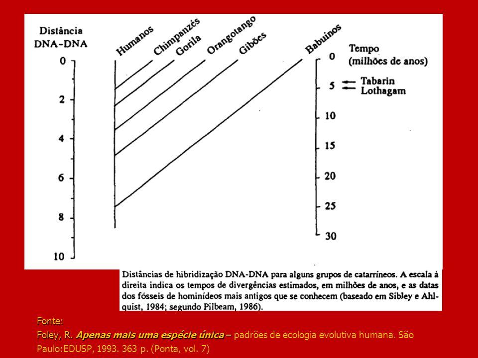 Fonte: Foley, R. Apenas mais uma espécie única – Fonte: Foley, R. Apenas mais uma espécie única – padrões de ecologia evolutiva humana. São Paulo:EDUS