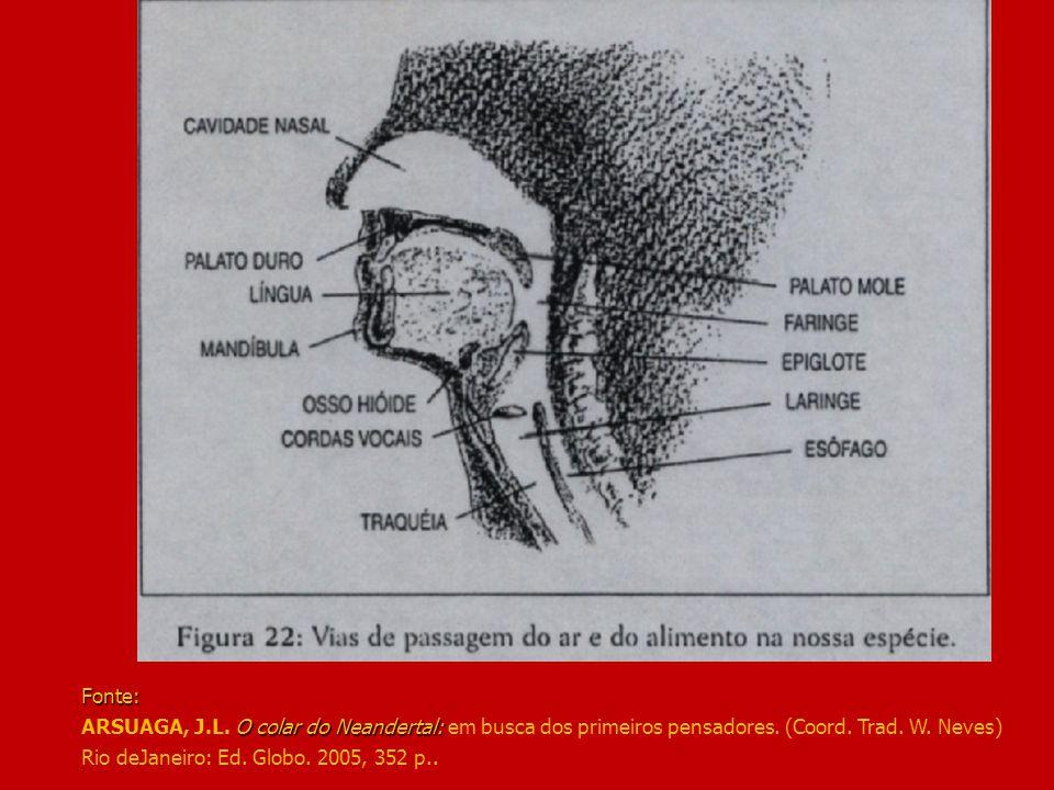 Fonte: O colar do Neandertal: Fonte: ARSUAGA, J.L. O colar do Neandertal: em busca dos primeiros pensadores. (Coord. Trad. W. Neves) Rio deJaneiro: Ed
