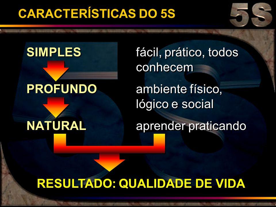 CARACTERÍSTICAS DO 5S SIMPLESfácil, prático, todos conhecem PROFUNDOambiente físico, lógico e social NATURALaprender praticando SIMPLESfácil, prático,